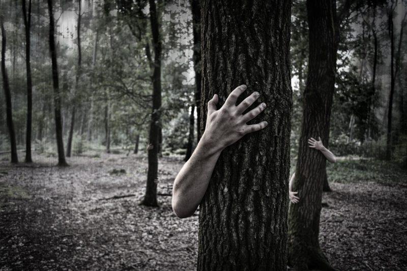 映画「マギー」 アーノルド•シュワルツェネッガーの今度の敵はゾンビ!?